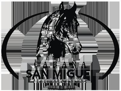 Cabaña San Miguel
